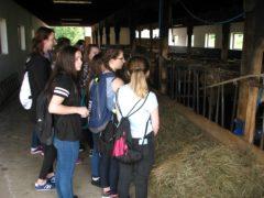 Z wizytą w gospodarstwach rolnych