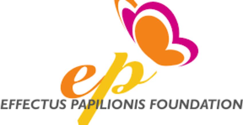 Stypendium Fundacji Efekt Motyla