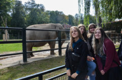 Wycieczka zawodoznawcza w Zoo