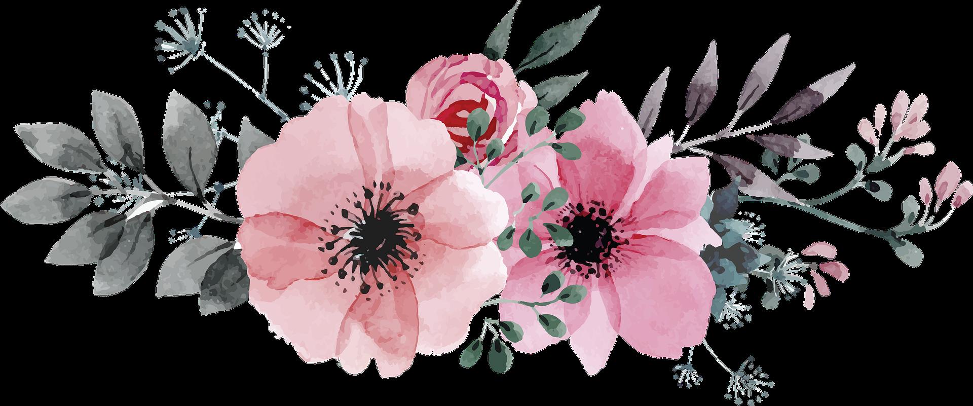 kwiaty   Zespół Szkół Nr 1 im. Józefa Piłsudskiego w Limanowej, ul. Józefa Piłsudskiego 81
