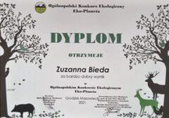 Dypolm Zuzanny Biedy